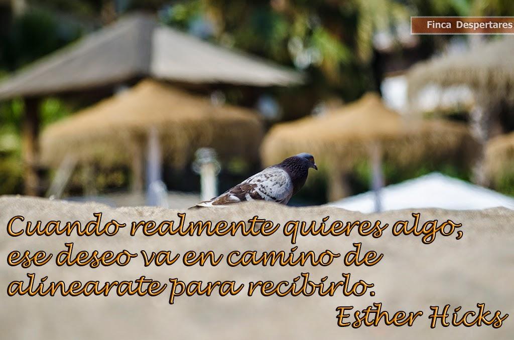 Finca Despertares - Esther Hicks