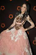 Kanika Kapoor glamorous photos-thumbnail-13