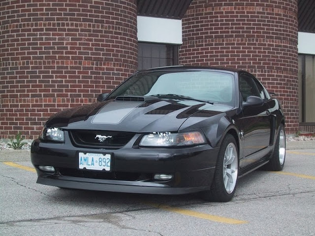 Ford Mustang Photos and Reviews