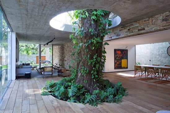 13 Times Humans Respected Mother Nature - Casa Vogue, Rio de Janeiro, Brazil