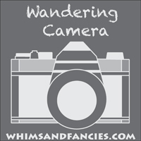 Wandering Camera... a place for awesome photos