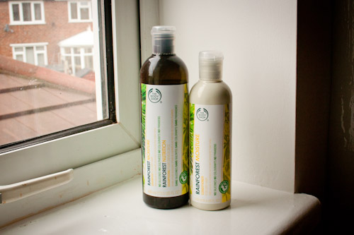 Body Shop Rainforest Moisture Shampoo & Conditioner