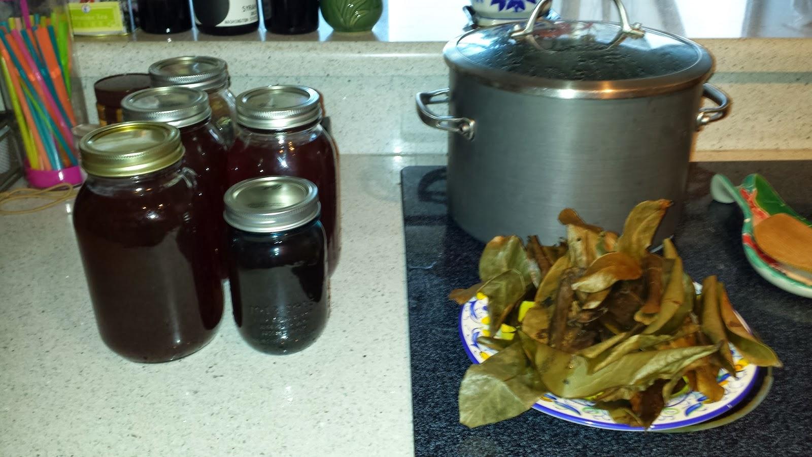 how to prepare guyabano leaves tea