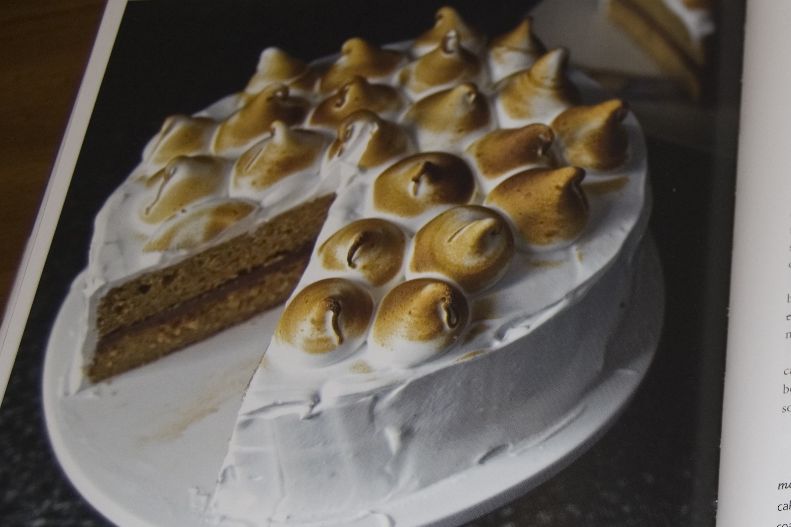 Smitten Kitchen Cake Z's Party Aka The S'more Layer Cake Adventure Aka The Unjoy Of