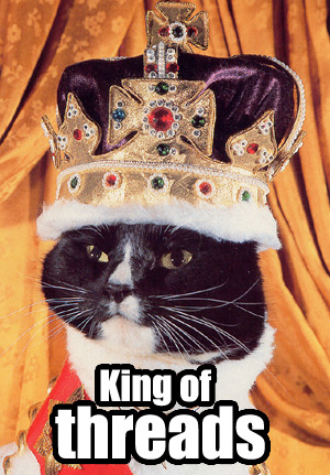 king-of-threads-cat-cats-kitten-kitty-pic-picture-funny-lolcat-cute-fun-lovely-photo-images.jpg