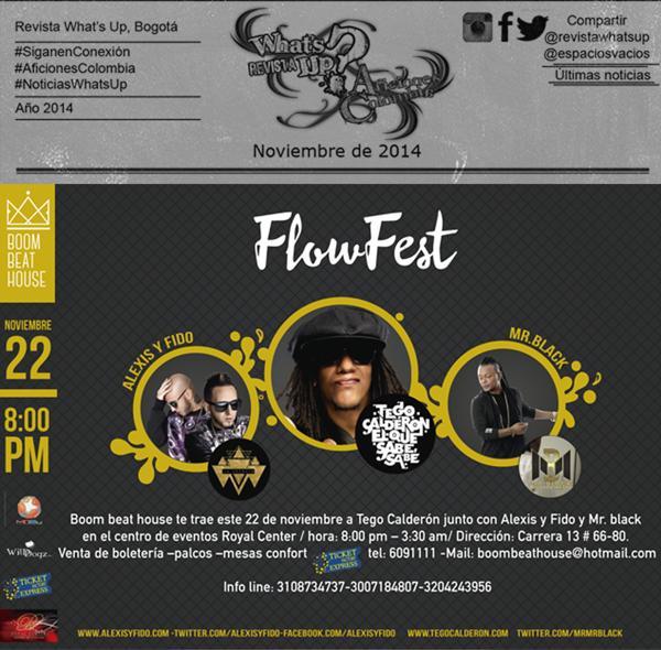 Flow-Fest