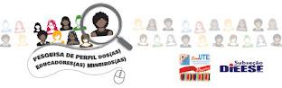 Pesquisa de perfil dos(as) educadores(as) mineiros(as)