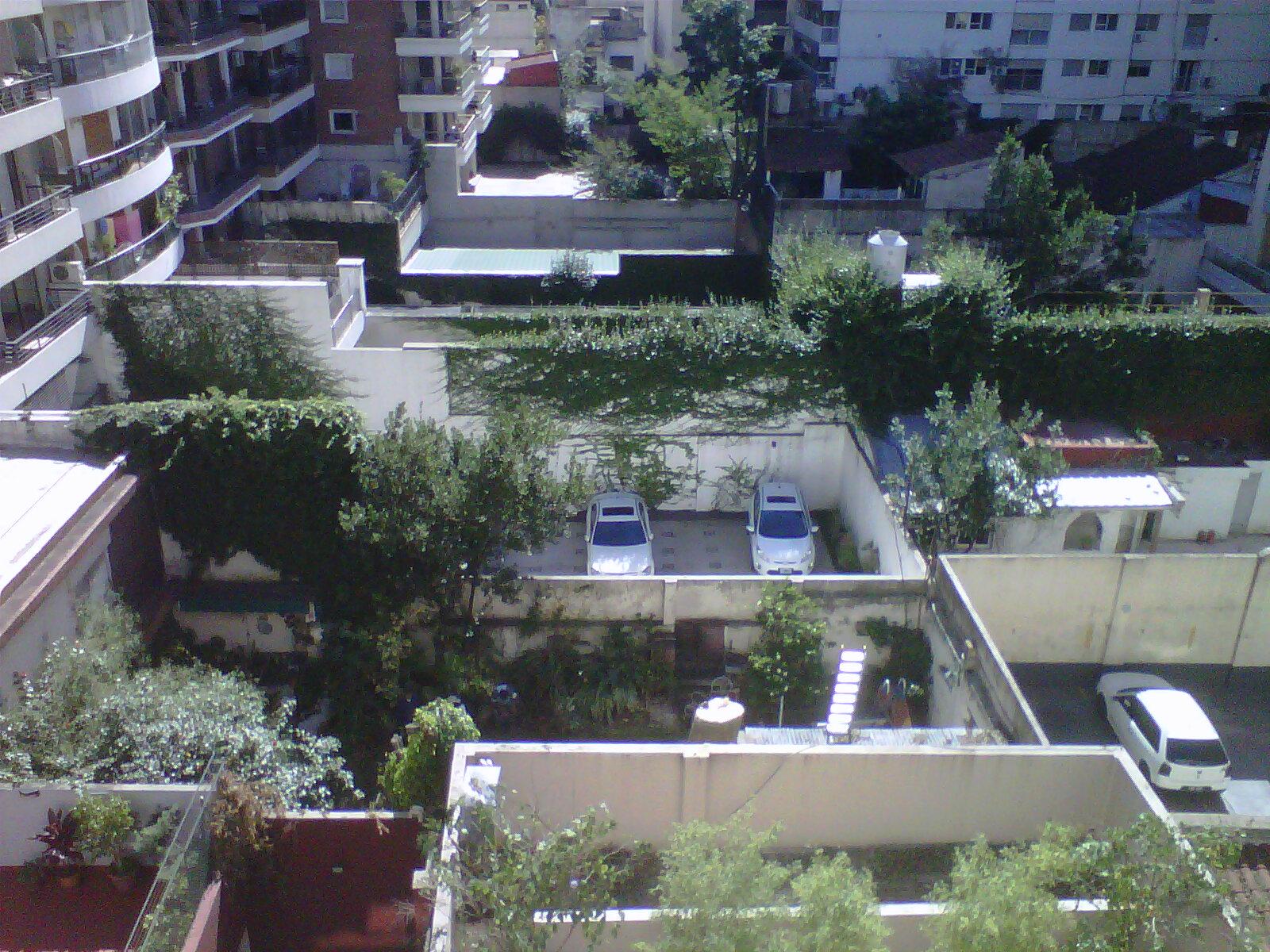 CASPA DE ESTRELLAS: ARBOLES Y EDIFICIOS