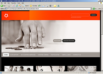 Accounting Website Templates5