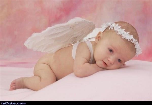 Image bébé ange chou