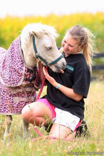 Rene Stichbury, Havelock North, with Pavlova, a friend's miniature horse which escaped from Rene's home and was rounded up by police in the Havelock North New World carpark. photograph