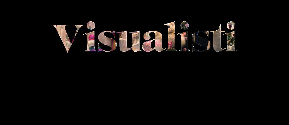NÄYTEIKKUNASSA | Visualistiksi voit opiskella Salon seudun ammattiopistossa