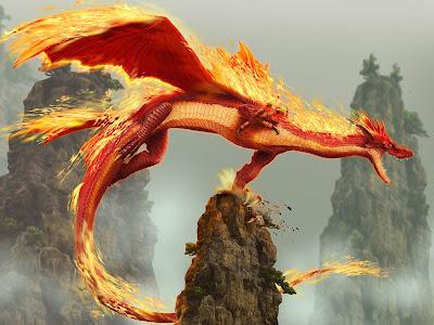The Dragon Hd Wallpaper