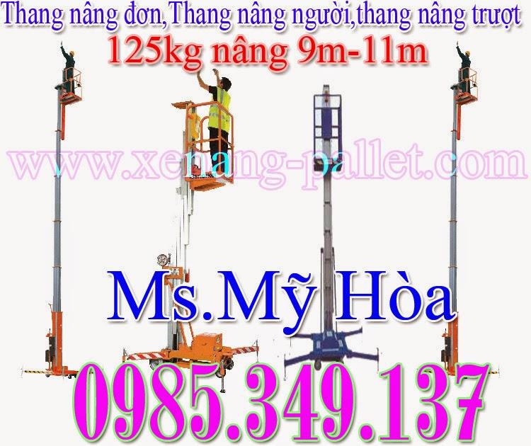 Thang nâng đơn 125kg -9m, 11m