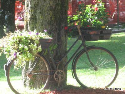 sinaia-parcul-d.ghica-aranjamente-florale-3