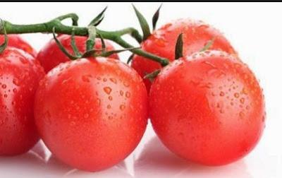 Tanaman Sayur yang Menguntungkan