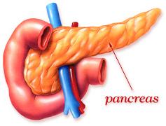 Afectiunile pancreatice