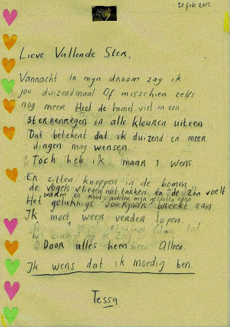 Brief aan Vallende Ster