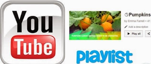 Pumpkin Videos for Kids
