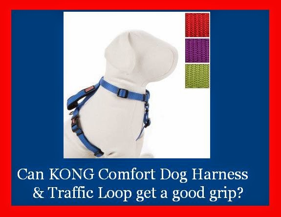 Fad to the Bone: Can KONG Comfort Dog Harness & Traffic Loop get a