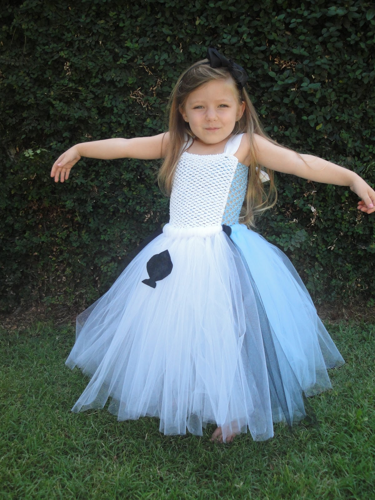 Hollywoodtutu Dresses Alice In Wonderland Tutu Dress Costume