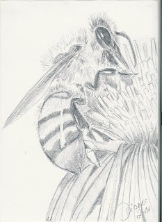 Abelha (desenho)