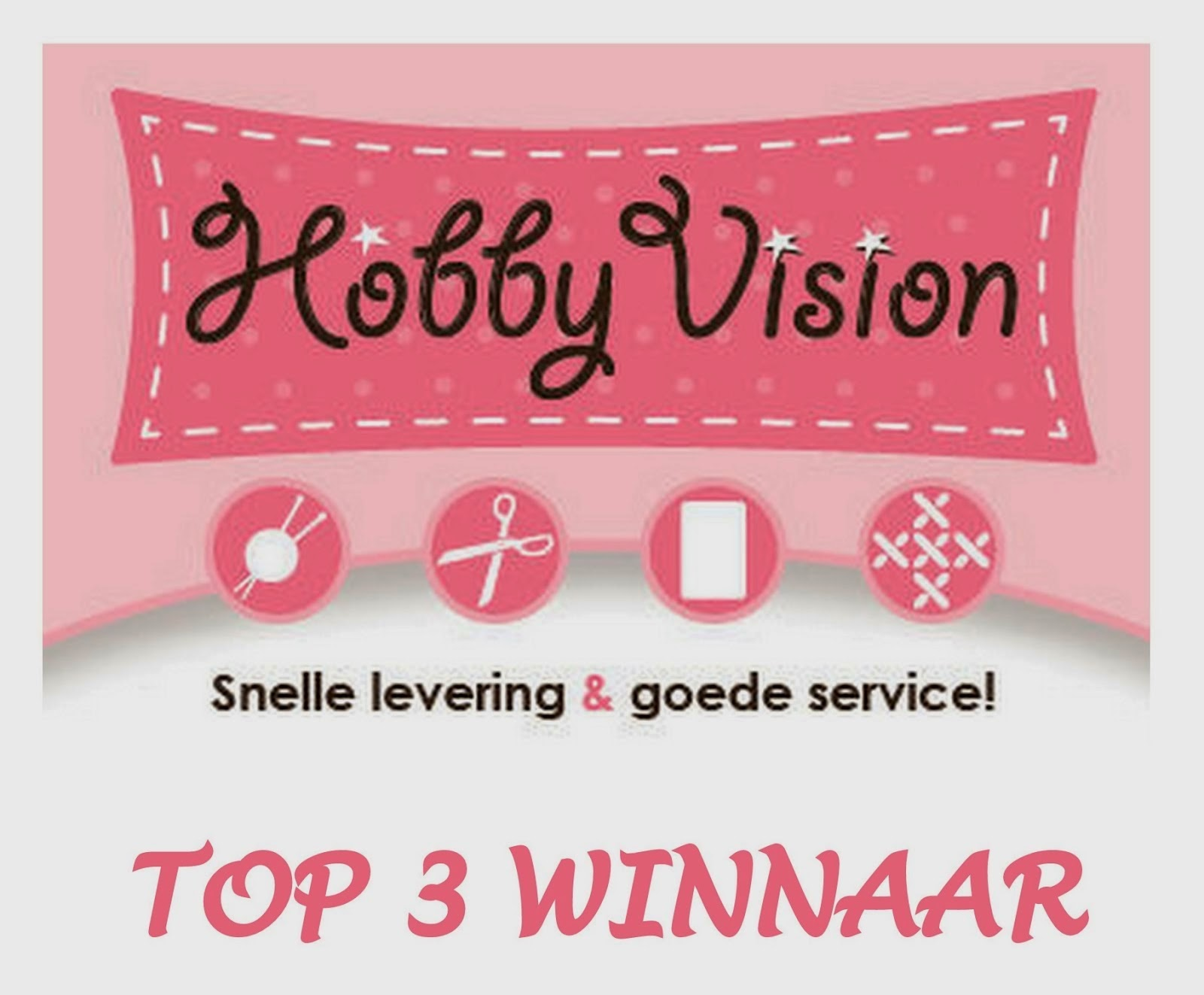 1e in Top3 #29 Hobby Vision