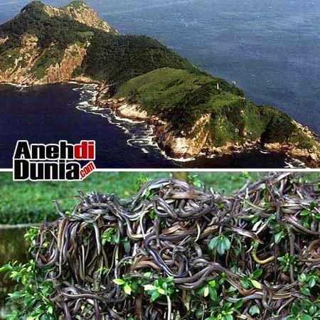 [Image: pulau-Ilha-de-Queimada-Gran.jpg]