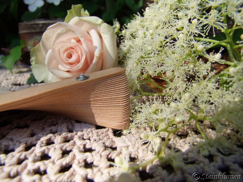 Kletterhortensie Blüte