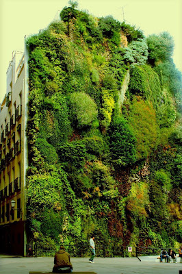 VERTICAL GARDEN WALL IN MADRID,SPAIN