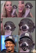 Snoop Dog Meme Facedog. Etiquetas: dog, face, meme, snoop