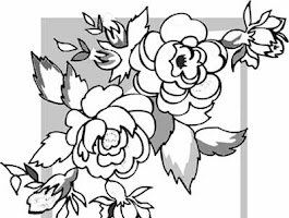 Free Adult Coloring Pages Skulls