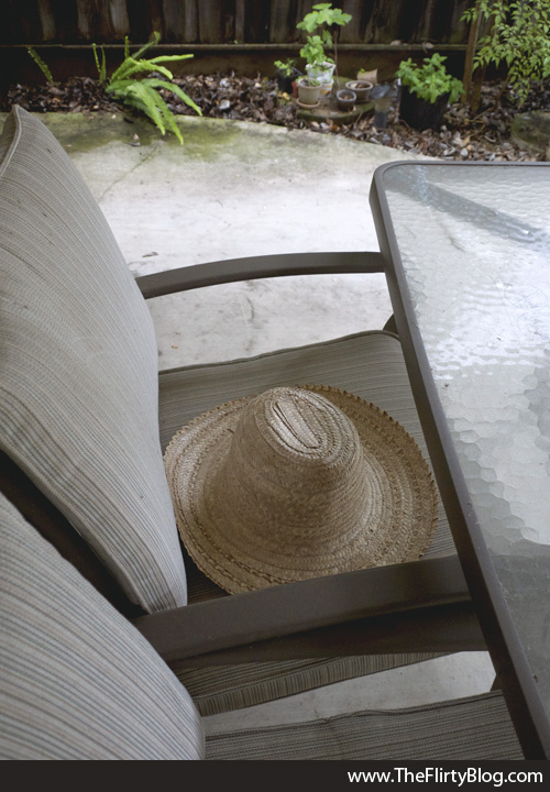 Hat, Chair