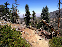 View north from Mount Islip Trail near the junction to Little Jimmy Trail Camp, Angeles National Forest