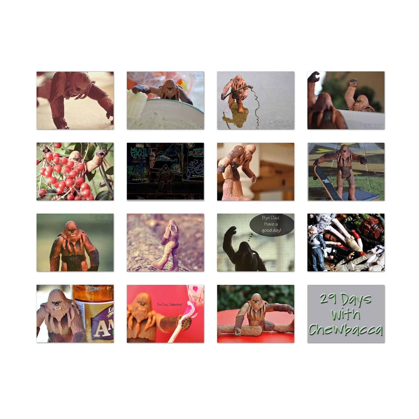 http://4.bp.blogspot.com/-62PmsgJPmYc/Tz_Ew55m0tI/AAAAAAAAFYY/WjAkekDaVHA/s1600/Chewbacca-collage-1.jpg
