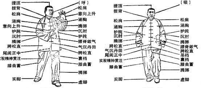 Wu Style Taijiquan line drawings