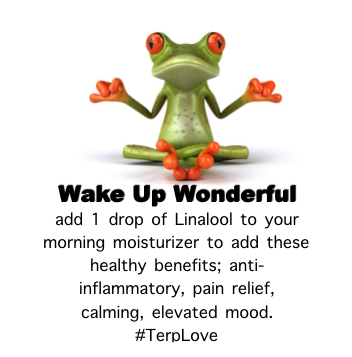 Linalool Relaxes Naturally