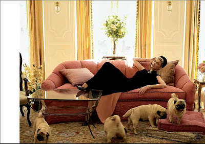 How many pugs does Valentino have?