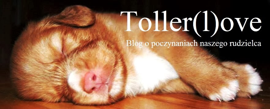 Toller(l)ove