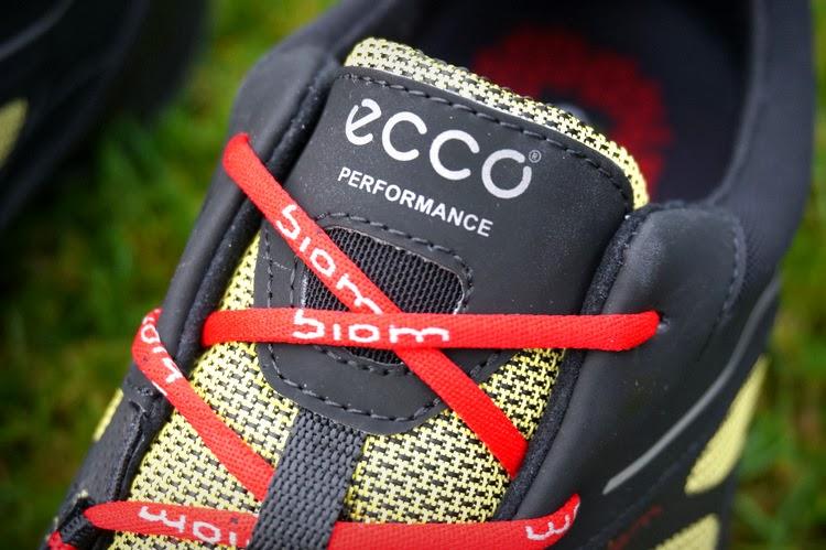 Shoeporn Ecco Biom Ultra Gtx