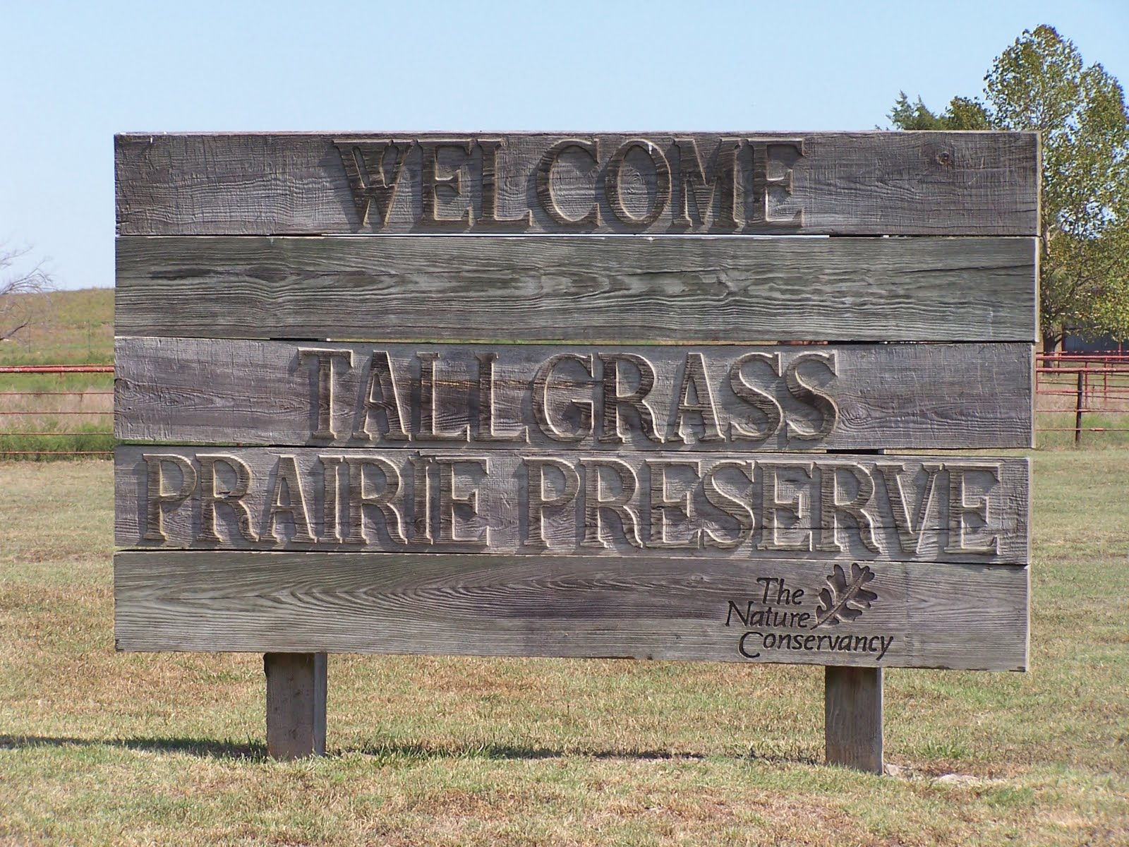 preservation of the tallgrass prairie Amazoncom description: product description: since its publication in 1982, where the sky began has become a landmark in environmental literaturemuch of today's interest in the preservation of native grasslands was sparked by this classic work.