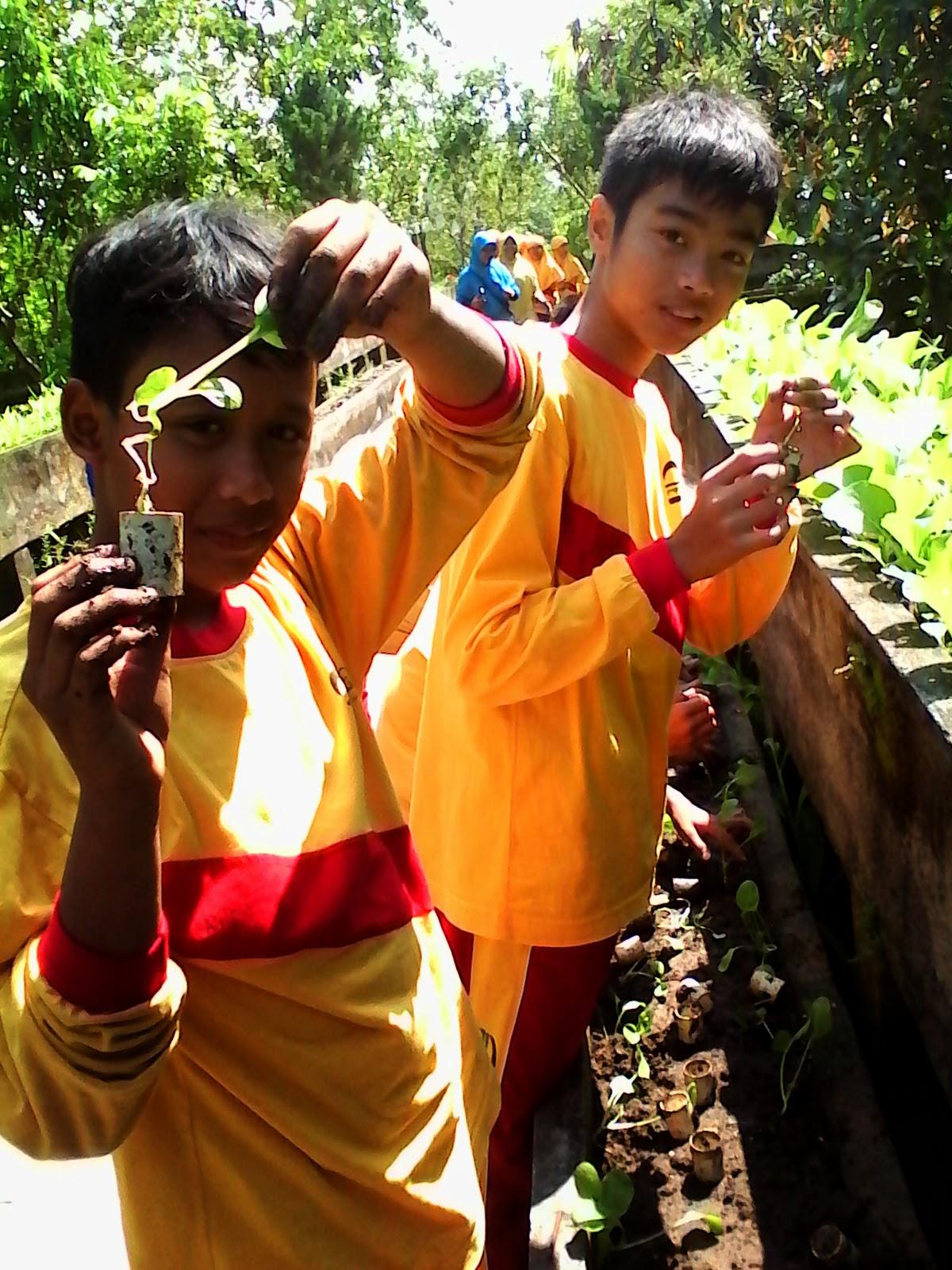 1 Hari Belajar Math Science Di Lembah Hijau Kang Guru