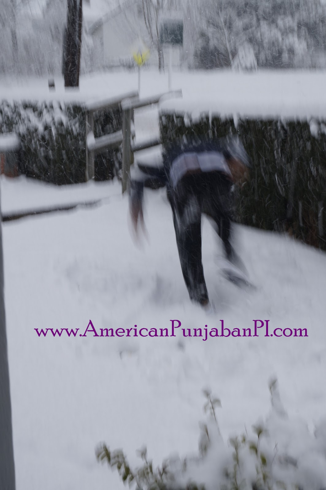 Punjabi snow angels