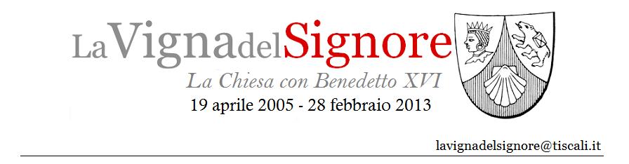 La Vigna del Signore (2008-2013)
