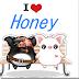 [檔案下載]honey音樂下載器安裝 最新版2016