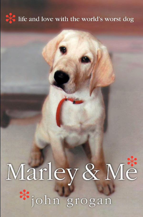 book report marley and me In fact, 22 dogs were used to play marley as he grows from a puppy to  and if  you've read the book, you might notice a few bits are left out of.