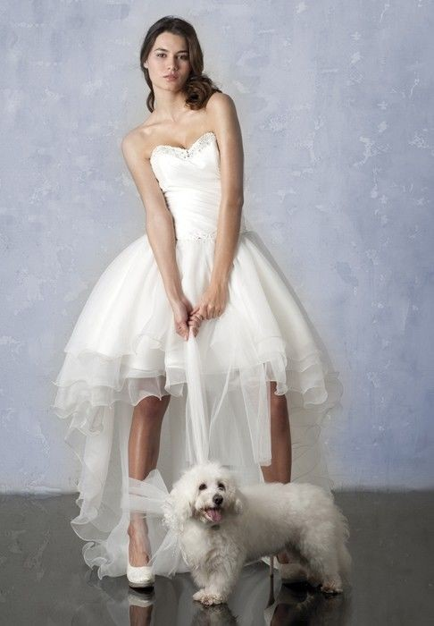 Whiteazalea high low dresses august 2013 for High low sweetheart wedding dress