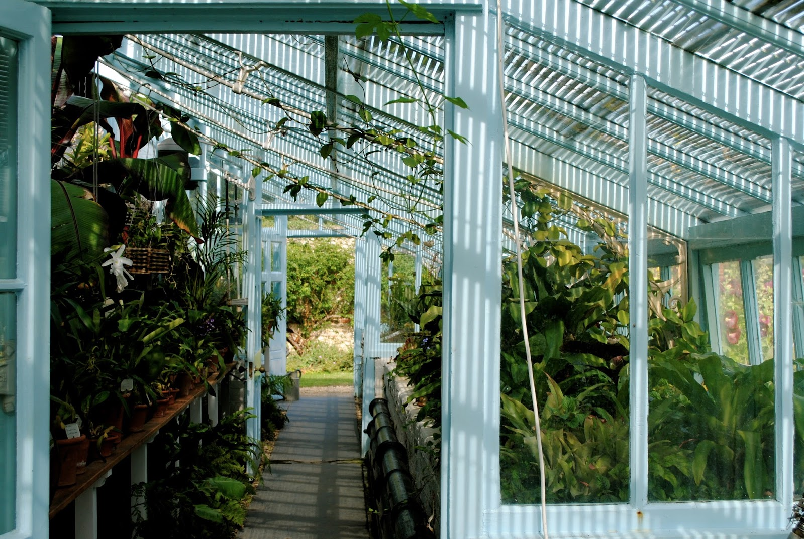 The Greenhouse of Charles Darwin at the Downe House in Kent England