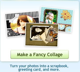 Picnik make a fancy collage button