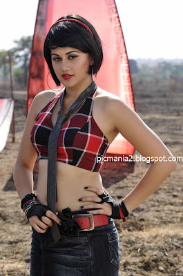 south indian actress Tapsee Hot In Saree Stills bikini hot cleavage and navel show image gallery
